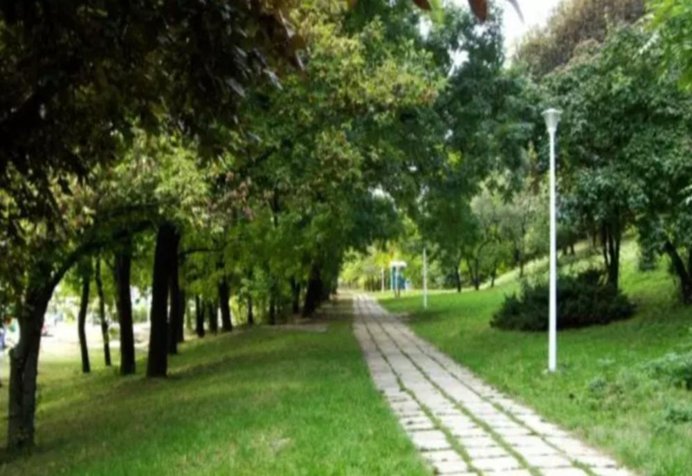 Culisele statului paralel | Afaceri CONTROVERSATE ale Primăriei Capitalei. Parcul Verdi – TUN de zeci de milioane de euro. Cine a profitat